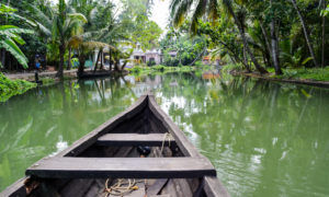 Boating at Kollam Backwaters on God's own island