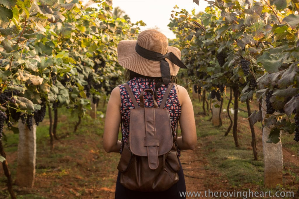 vineyard heritage winery mysore road