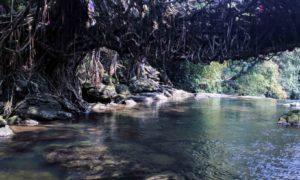 Exploring the Mystical land of Cherrapunji, Meghalaya