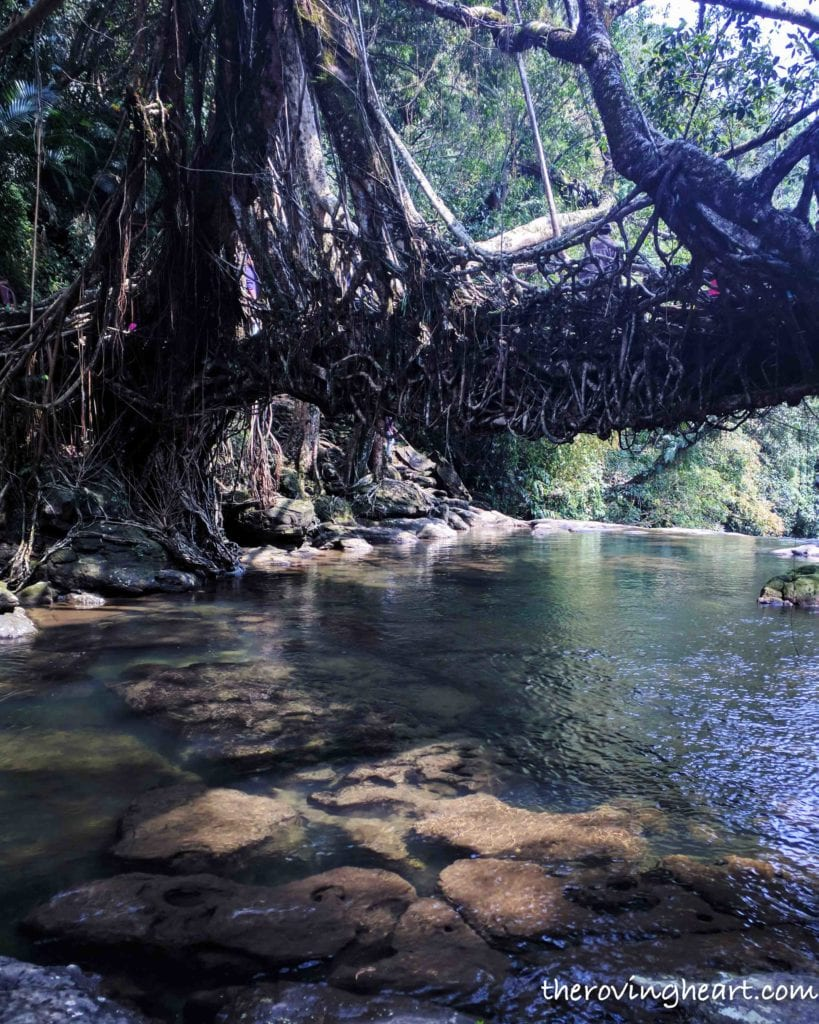 Things To Do In The Mystical Land Of Cherrapunji