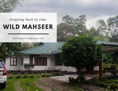 Stepping back in time: Wild Mahseer, Assam