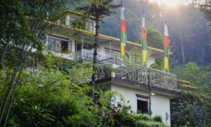 Experience the essence of Sikkim at Bamboo retreat