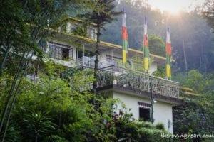 Bamboo Retreat, Sikkim