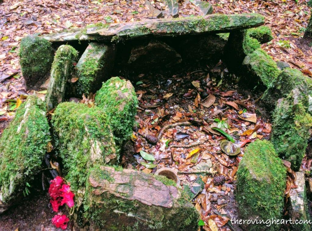 wishing altar sacred forest mawphlang meghalaya stories demon snake