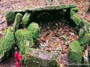 wishing altar sacred forest mawphlang meghalaya stories
