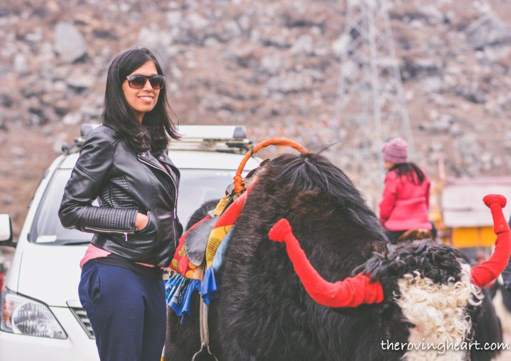 Things to do in Gangtok tsmogo lake