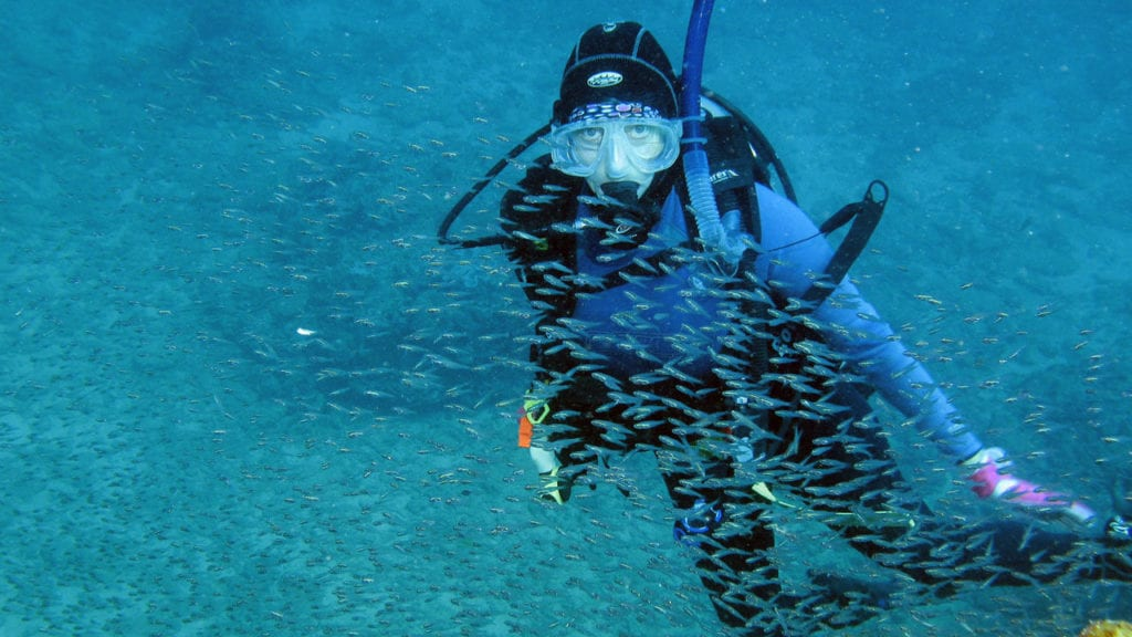 Ningaloo australia, best diving in the world, best scuba diving in the world