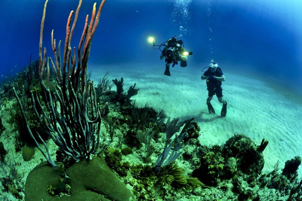 Best scuba diving locations in the world -Tubbutaha in Puerto Princes, Philippines