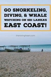 nilaveli beach, nilaveli diving sri lanka