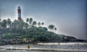 Illustrating 'Humans by Nature' Ethos of Kerala   The Roving Heart